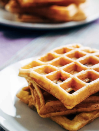 Low Carb Easy Waffles | Sugar Free Grain Free
