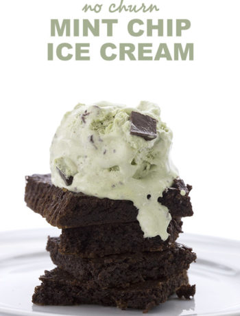 Low Carb No Churn Mint Chip Ice Cream